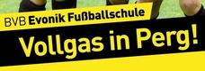 BVB-Fussballschule_Ausschnitt